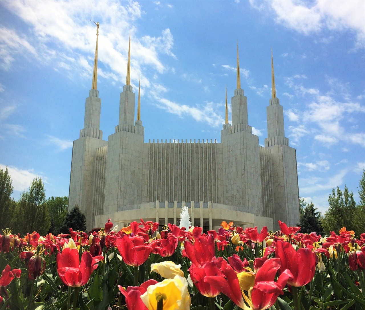 Understanding Idolatry After Mormonism